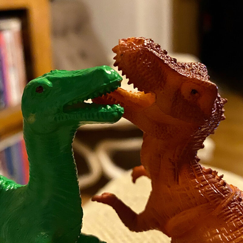 Two toy dinosaurs locked face to face.