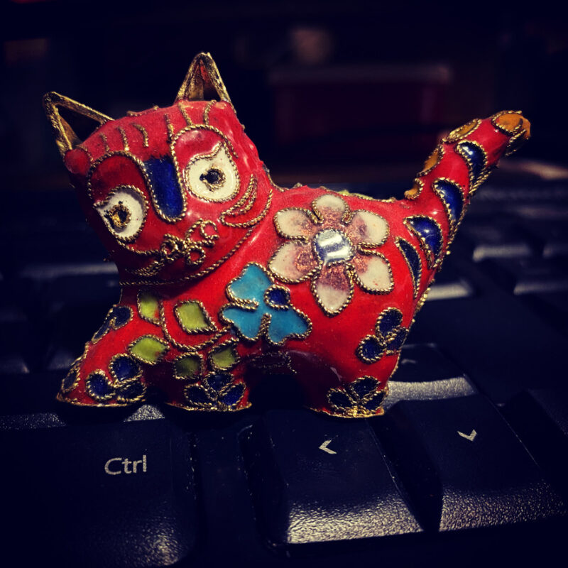Red model cat with colourful flowers, on a keyboard