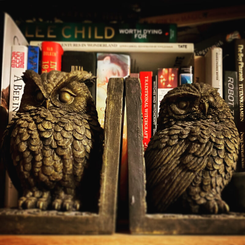 Two owl shaped book ends