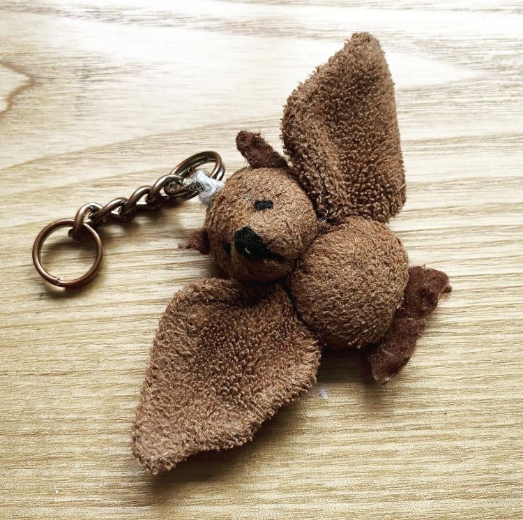 Keyring of a brown bat
