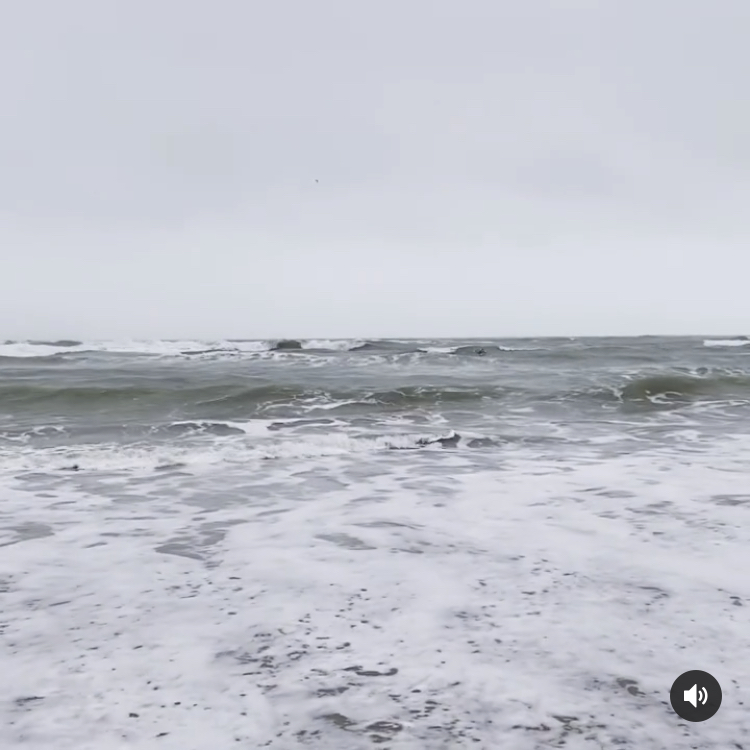 The sea on a cold day