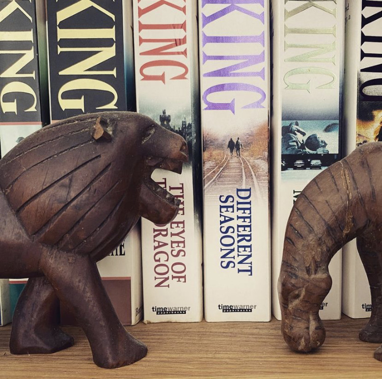 Wooden carved lion and zebra in front of Stephen King books